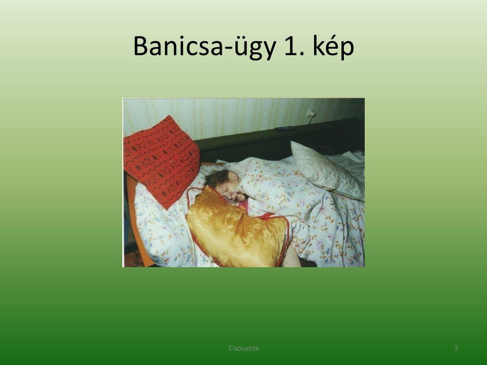 Banicsa-ügy 1. kép 3Elkövetők