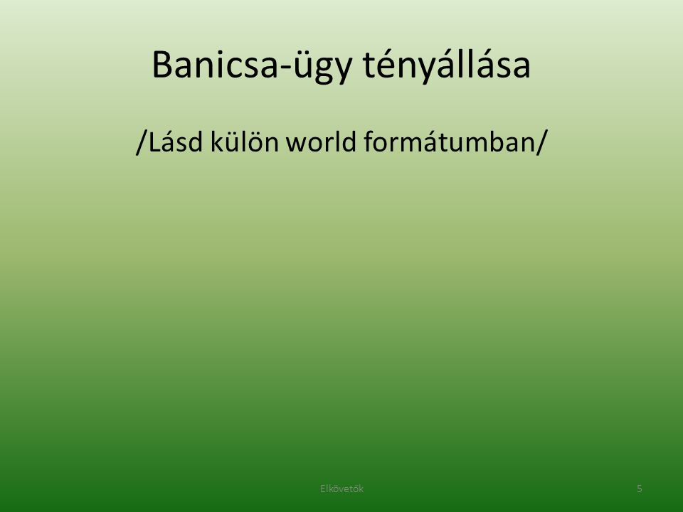 Banicsa-ügy tényállása /Lásd külön world formátumban/ 5Elkövetők