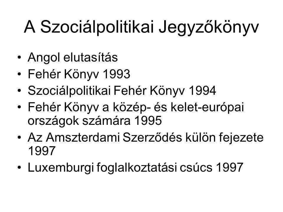 A Szociálpolitikai Jegyzőkönyv Angol elutasítás Fehér Könyv 1993 Szociálpolitikai Fehér Könyv 1994 Fehér Könyv a közép- és kelet-európai országok számára 1995 Az Amszterdami Szerződés külön fejezete 1997 Luxemburgi foglalkoztatási csúcs 1997
