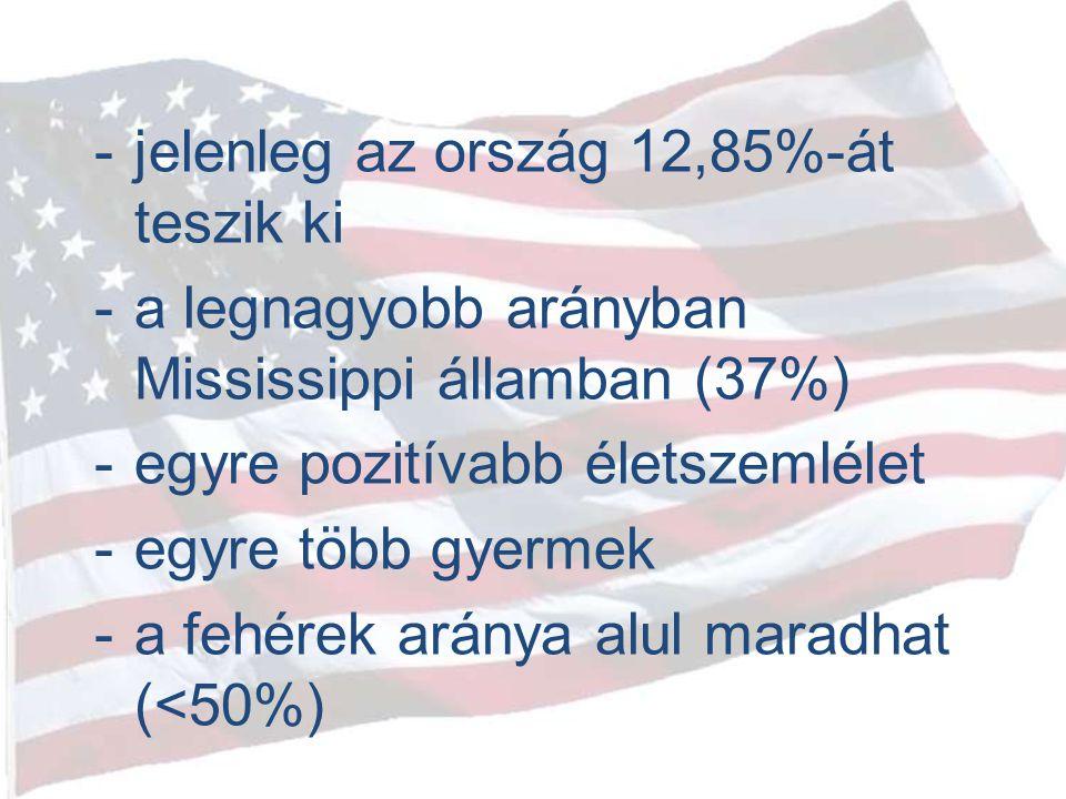 -jelenleg az ország 12,85%-át teszik ki -a legnagyobb arányban Mississippi államban (37%) -egyre pozitívabb életszemlélet -egyre több gyermek -a fehér