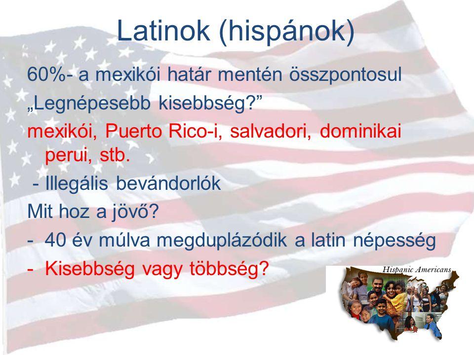 """Latinok (hispánok) 60%- a mexikói határ mentén összpontosul """"Legnépesebb kisebbség?"""" mexikói, Puerto Rico-i, salvadori, dominikai perui, stb. - Illegá"""