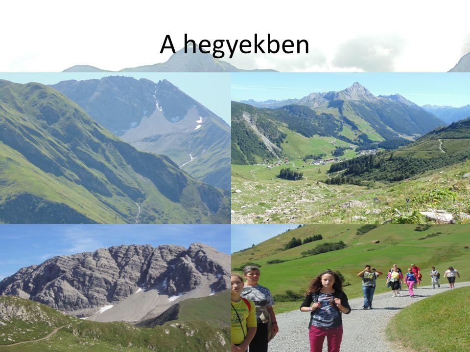 A hegyekben