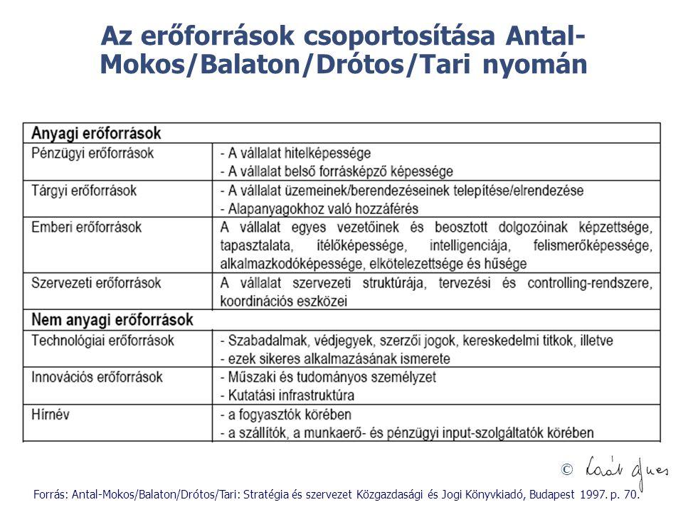 © Az erőforrások csoportosítása Antal- Mokos/Balaton/Drótos/Tari nyomán Forrás: Antal-Mokos/Balaton/Drótos/Tari: Stratégia és szervezet Közgazdasági é