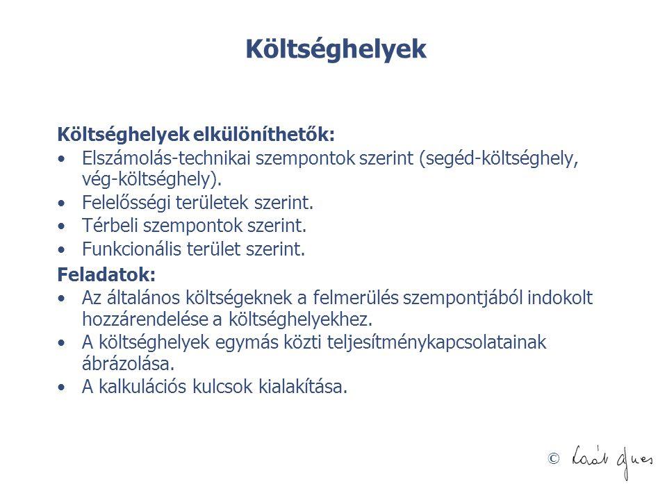 © Erőforrások osztályozása Kosiol nyomán Forrás: Kosiol, E.