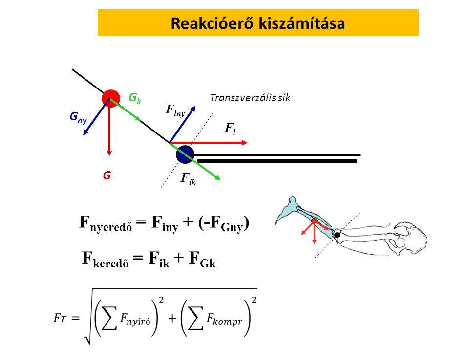 Reakcióerő kiszámítása – Az ízületre ható erő FGFG FiFi FikFik F iny F Gny F Gh F nyeredő = Finy +(- FGny) F keredő = Fik + (- FGh) Fr