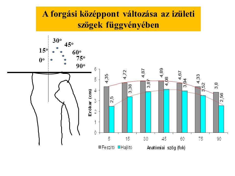 0o0o 15 o 30 o 45 o 60 o 75 o 90 o A forgási középpont változása az izületi szögek függvényében