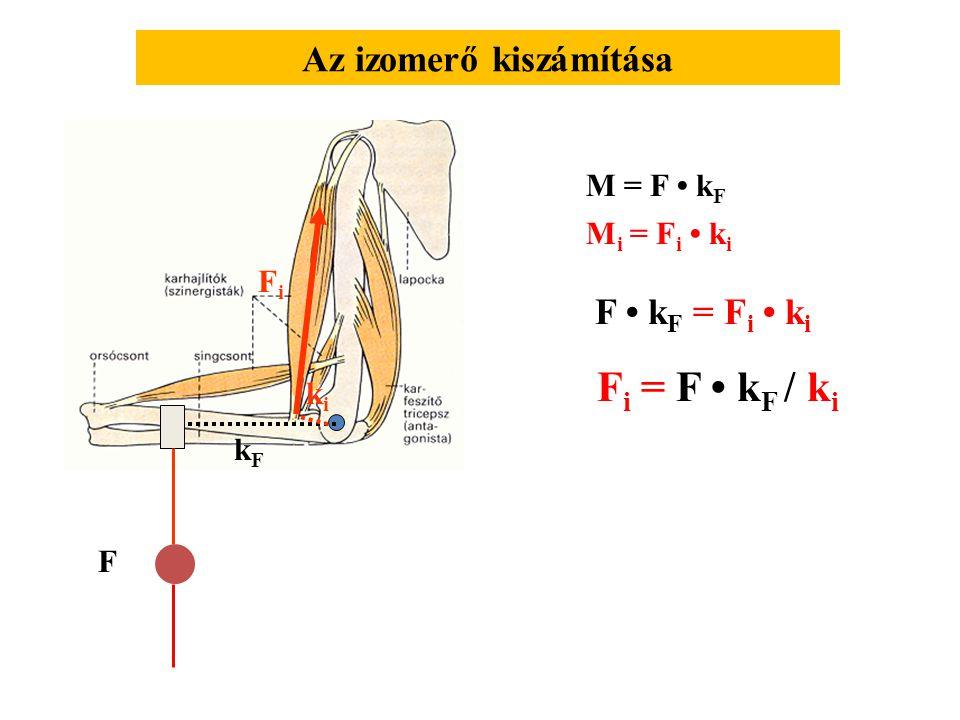 F1F1 F2F2 FpFp FfFf k1k1 F pny F pc F hny F hc FhFh M f = F 1 · k 1 F f = F 1 · k 1 / k p kpkp M h = F 2 · k 2 F h = F 2 · k 2 / k h khkh k2k2 Izomerő meghatározása dinamométer alkalmazásával