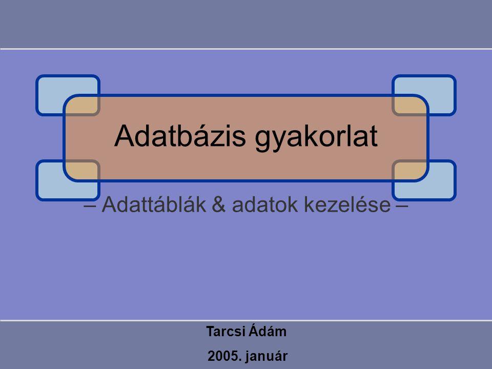 Példa CREATE TABLE tTanar (TAzon INTEGER NOT NULL, Nev VARCHAR(50), CONSTRAINT pk_tTanar PRIMARY KEY (TAzon)) CREATE TABLE tDiak (DAzon INTEGER NOT NULL, Nev VARCHAR(50) NOT NULL, Kor INTEGER NOT NULL, TAzon INTEGER NOT NULL, CONSTRAINT pk_tDiak PRIMARY KEY (Dazon), CONSTRAINT fk_tDiak_tTanar FOREIGN KEY (TAzon) REFERENCES tTanar (TAzon), CONSTRAINT ck_tDiak CHECK (Kor BETWEEN 1 AND 100), CONSTRAINT uq_tDiak UNIQUE (Nev))