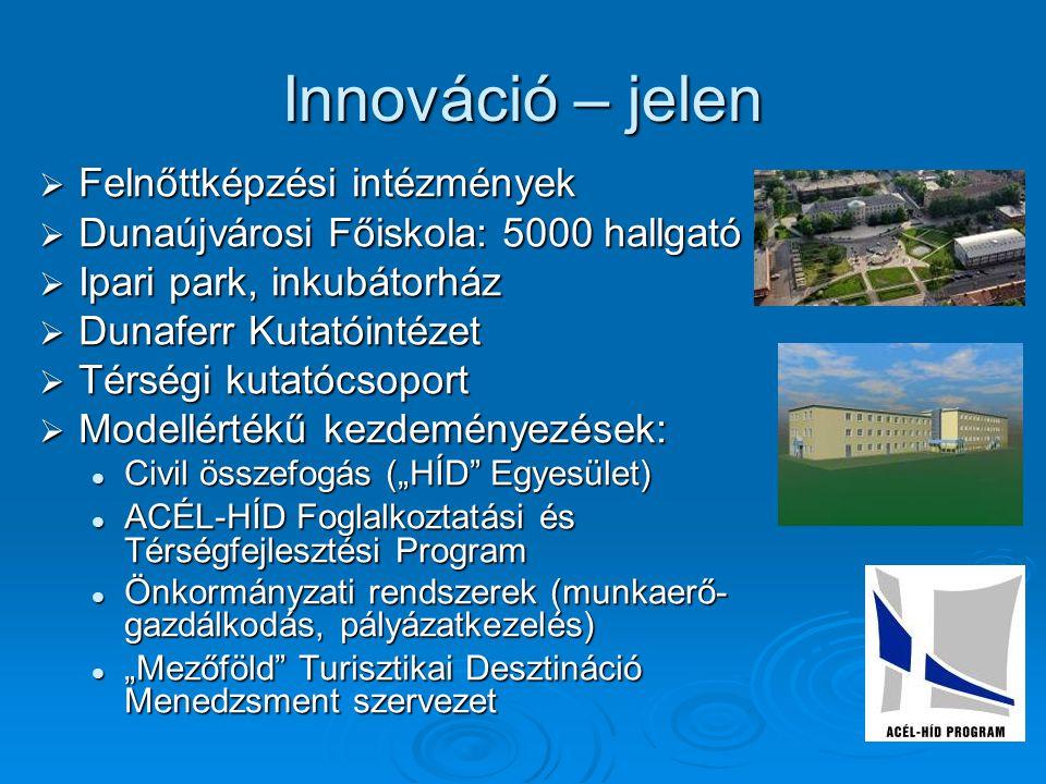 Innováció – jelen  Felnőttképzési intézmények  Dunaújvárosi Főiskola: 5000 hallgató  Ipari park, inkubátorház  Dunaferr Kutatóintézet  Térségi ku