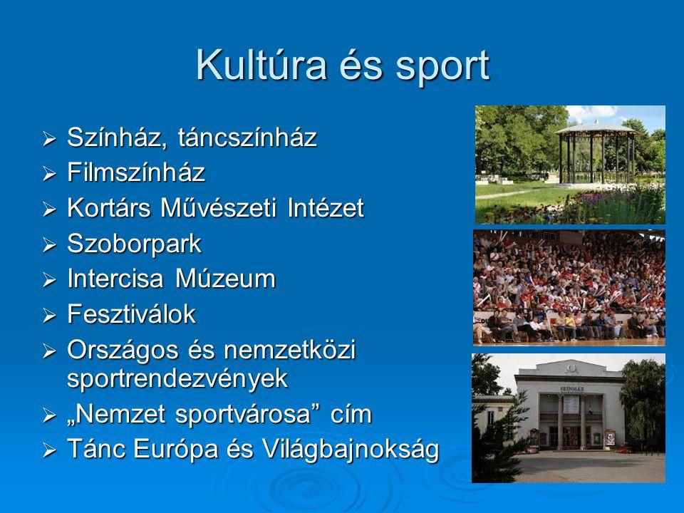 Kultúra és sport  Színház, táncszínház  Filmszínház  Kortárs Művészeti Intézet  Szoborpark  Intercisa Múzeum  Fesztiválok  Országos és nemzetkö