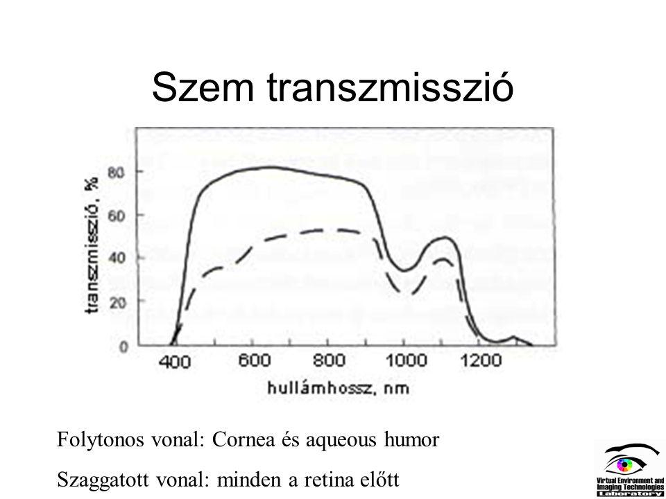 Pálcikák és csapok működése Sötétben Na+ ionok áramlanak a külső szegmensbe Fény hatására a cGMP csatornák zárnak Sötétben 50 pA-es sötétáramot kapcsol ki a fény, a membrán hiperpolarizációja – 40mV-ról –70mV-ra nő.