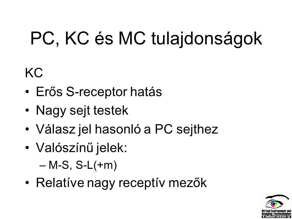 PC, KC és MC tulajdonságok KC Erős S-receptor hatás Nagy sejt testek Válasz jel hasonló a PC sejthez Valószínű jelek: –M-S, S-L(+m) Relatíve nagy rece