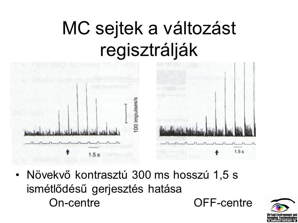 MC sejtek a változást regisztrálják Növekvő kontrasztú 300 ms hosszú 1,5 s ismétlődésű gerjesztés hatása On-centre OFF-centre