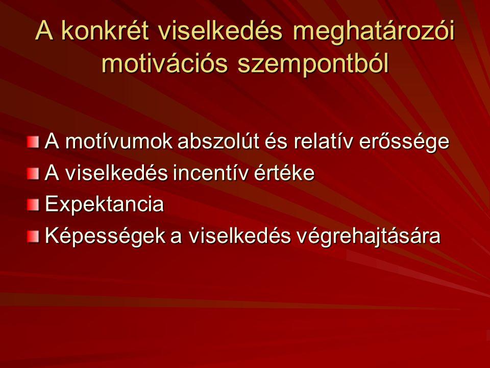 A konkrét viselkedés meghatározói motivációs szempontból A motívumok abszolút és relatív erőssége A viselkedés incentív értéke Expektancia Képességek