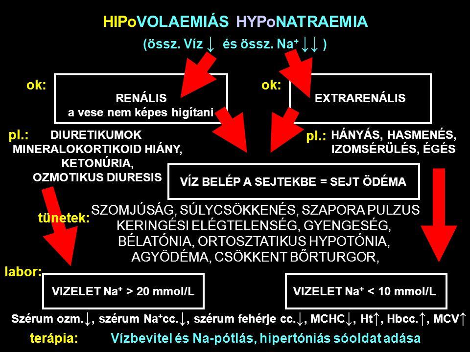 HIPoVOLAEMIÁS HYPoNATRAEMIA (össz. Víz ↓ és össz. Na + ↓↓ ) ok: RENÁLIS a vese nem képes higítani EXTRARENÁLIS pl.: DIURETIKUMOK MINERALOKORTIKOID HIÁ