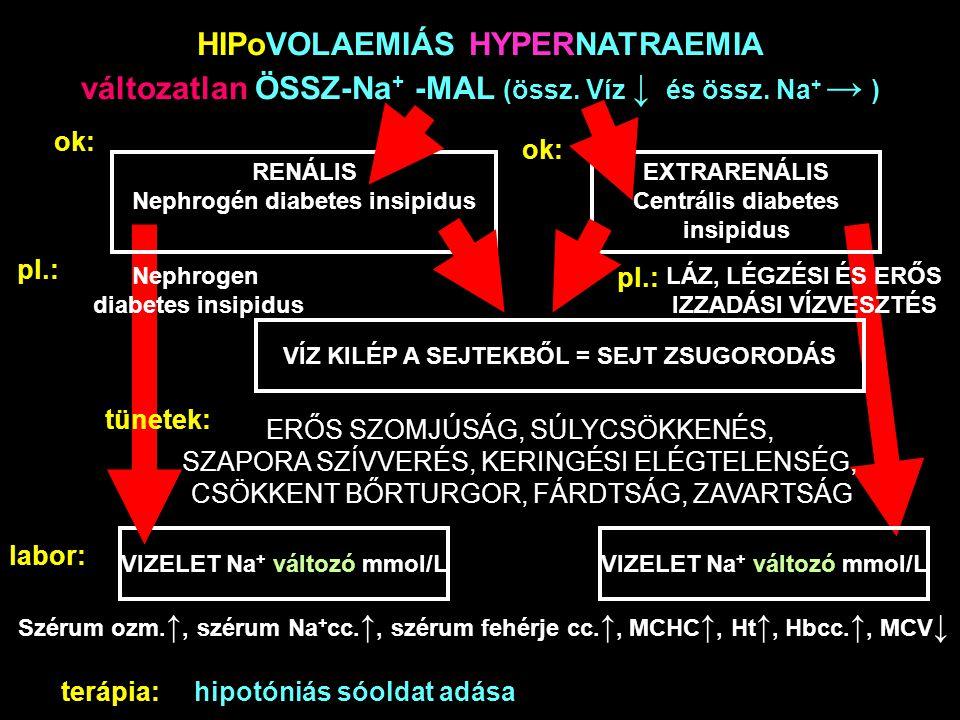 HIPoVOLAEMIÁS HYPERNATRAEMIA változatlan ÖSSZ-Na + -MAL (össz. Víz ↓ és össz. Na + → ) ok: RENÁLIS Nephrogén diabetes insipidus EXTRARENÁLIS Centrális