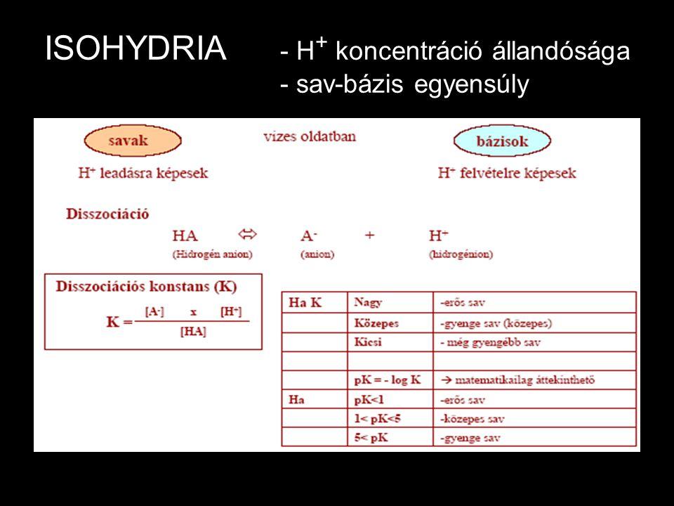 ISOHYDRIA - H + koncentráció állandósága - sav-bázis egyensúly