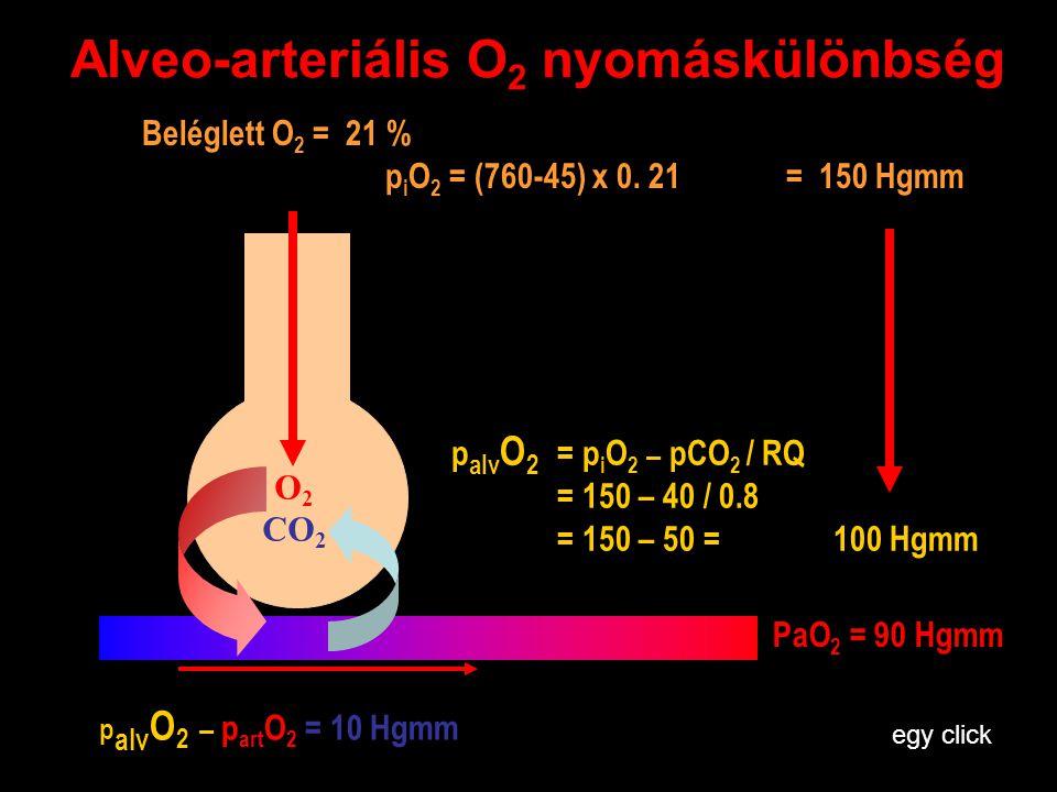 Alveo-arteriális O 2 nyomáskülönbség Beléglett O 2 = 21 % p i O 2 = (760-45) x 0. 21 = 150 Hgmm O 2 CO 2 p alv O 2 = p i O 2 – pCO 2 / RQ = 150 – 40 /