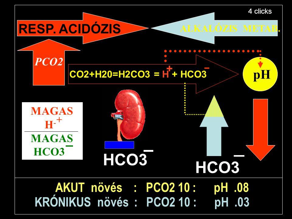 pH CO2+H20=H2CO3 = H + HCO3 + HCO3 RESP. ACIDÓZIS ALKALÓZIS METAB. AKUT növés : PCO2 10 : pH.08 KRÓNIKUS növés : PCO2 10 : pH.03 PCO2 MAGAS H - MAGAS