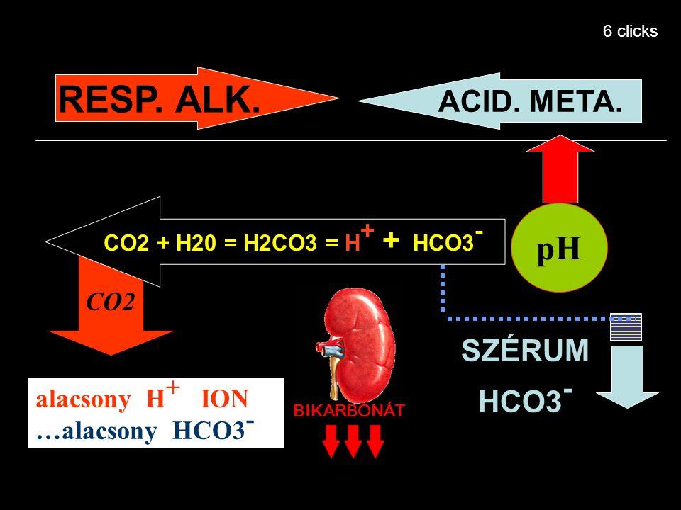 CO2 + H20 = H2CO3 = H + + HCO3 - pH SZÉRUM HCO3 - alacsony H + ION …alacsony HCO3 - RESP. ALK. ACID. META. CO2 BIKARBONÁT 6 clicks