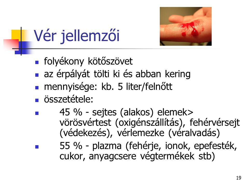 19 Vér jellemzői folyékony kötőszövet az érpályát tölti ki és abban kering mennyisége: kb. 5 liter/felnőtt összetétele: 45 % - sejtes (alakos) elemek>