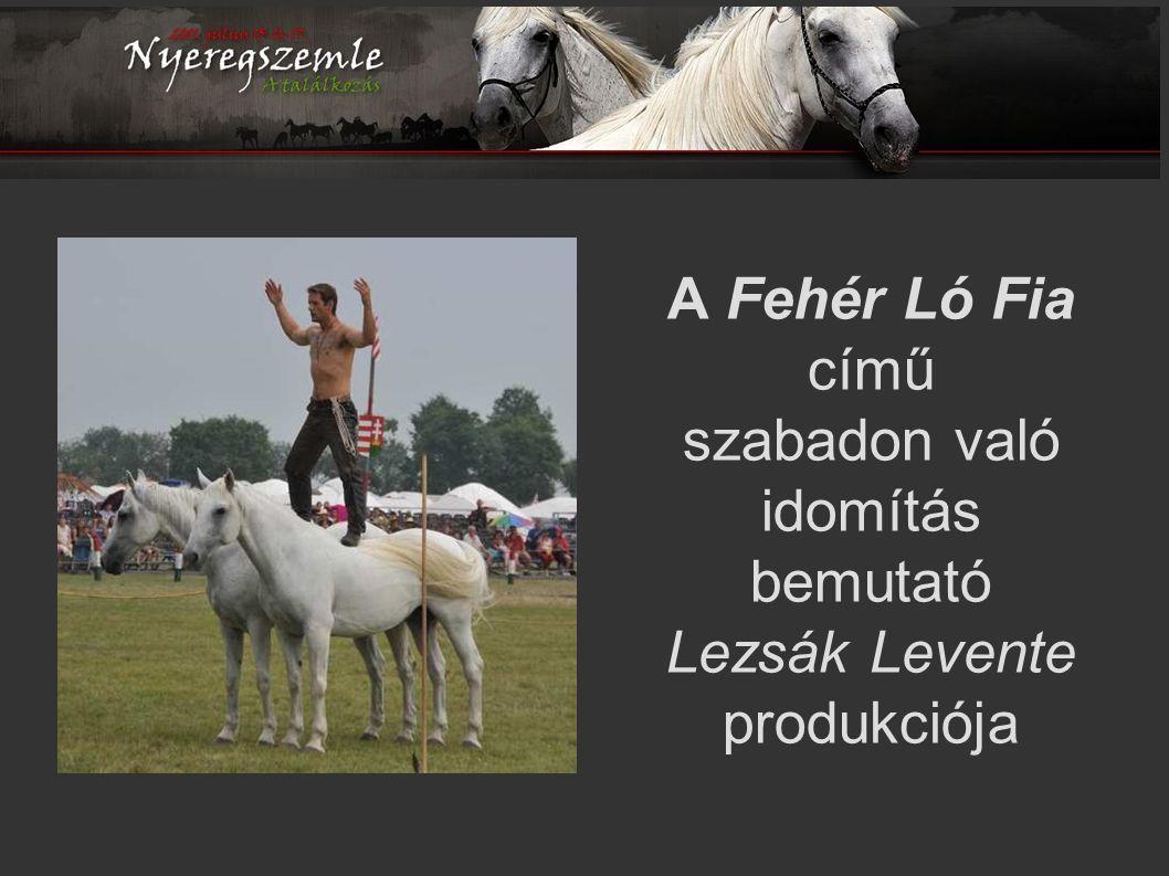 A Fehér Ló Fia című szabadon való idomítás bemutató Lezsák Levente produkciója