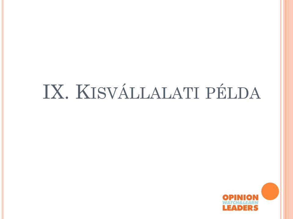 IX. K ISVÁLLALATI PÉLDA