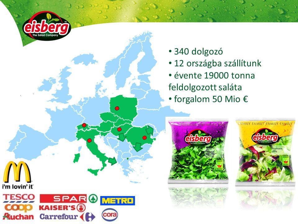 340 dolgozó 12 országba szállítunk évente 19000 tonna feldolgozott saláta forgalom 50 Mio €