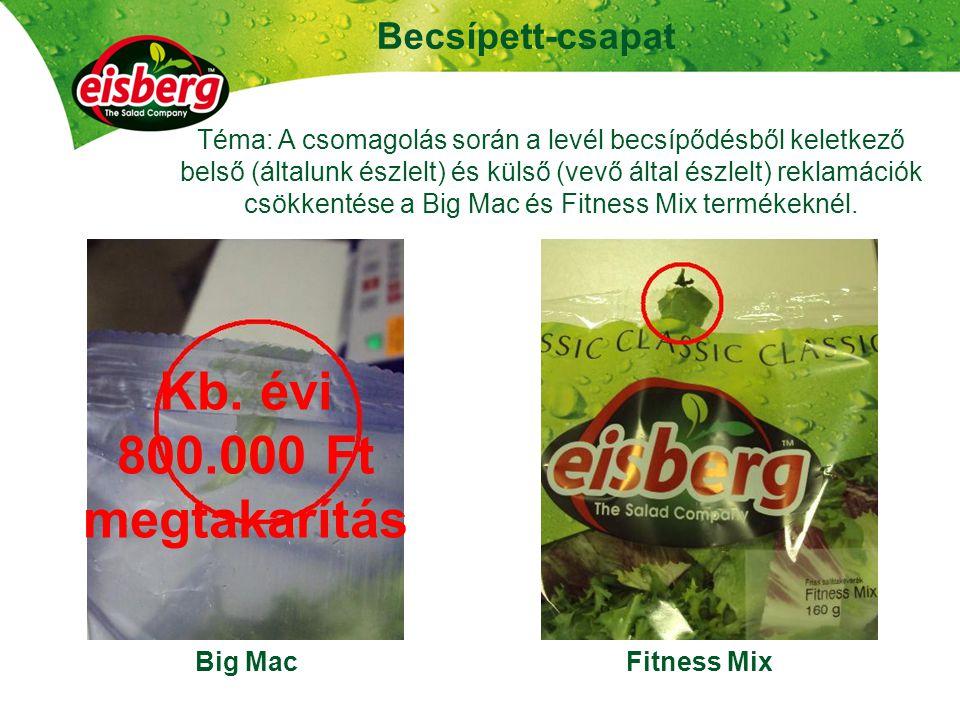 25 Becsípett-csapat Big MacFitness Mix Téma: A csomagolás során a levél becsípődésből keletkező belső (általunk észlelt) és külső (vevő által észlelt) reklamációk csökkentése a Big Mac és Fitness Mix termékeknél.