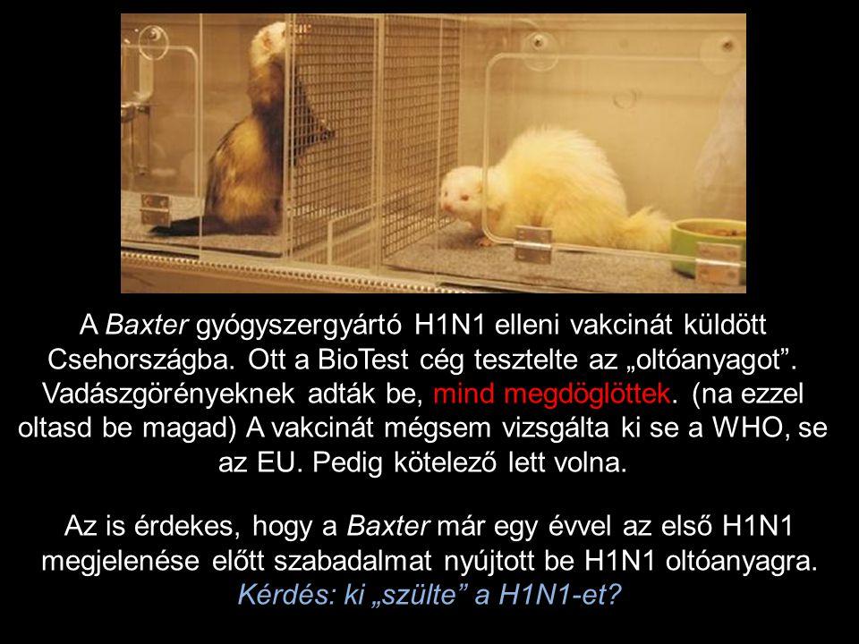A Baxter gyógyszergyártó H1N1 elleni vakcinát küldött Csehországba.