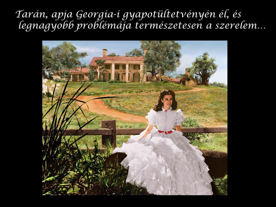 Tarán, apja Georgia-i gyapotültetvényén él, és legnagyobb problémája természetesen a szerelem…