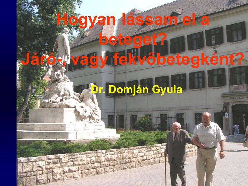 Pest Megyei Orvosnapok 2006 ÖSZEFOGLALÁS az ellátás formájának kiválasztása számos szempont figyelembe vételével lehetséges.