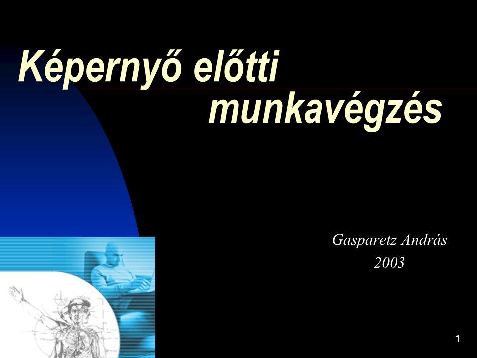 1 Képernyő előtti munkavégzés Gasparetz András 2003