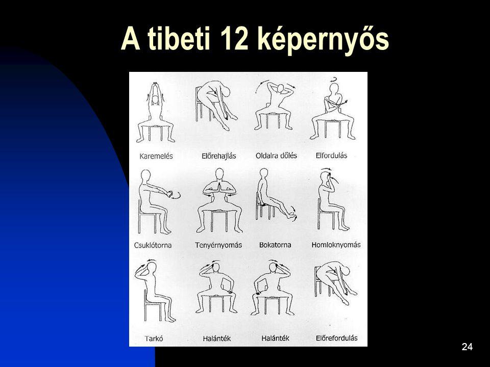24 A tibeti 12 képernyős
