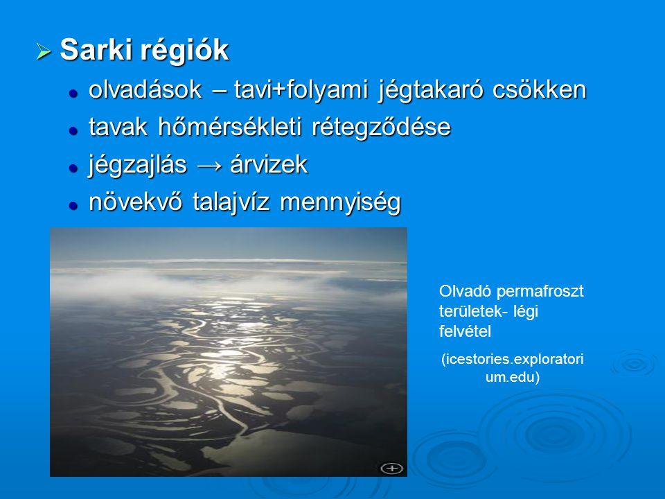  Sarki régiók olvadások – tavi+folyami jégtakaró csökken olvadások – tavi+folyami jégtakaró csökken tavak hőmérsékleti rétegződése tavak hőmérsékleti