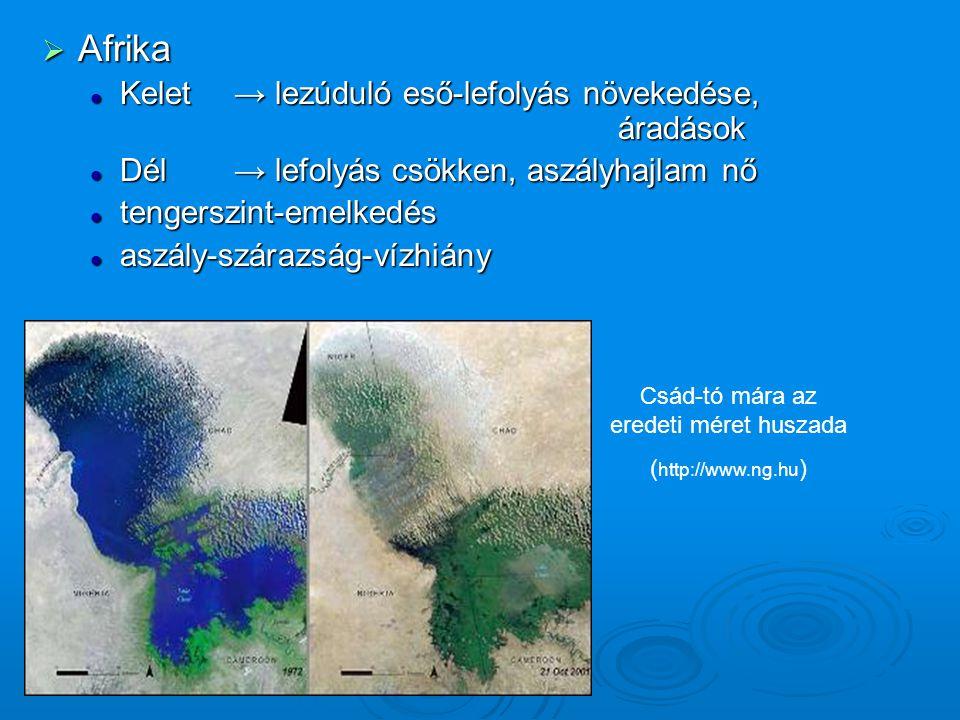  Afrika Kelet → lezúduló eső-lefolyás növekedése, áradások Kelet → lezúduló eső-lefolyás növekedése, áradások Dél→ lefolyás csökken, aszályhajlam nő