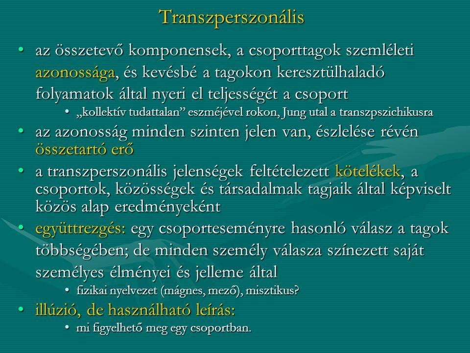 Transzperszonális az összetevő komponensek, a csoporttagok szemléletiaz összetevő komponensek, a csoporttagok szemléleti azonossága, és kevésbé a tago