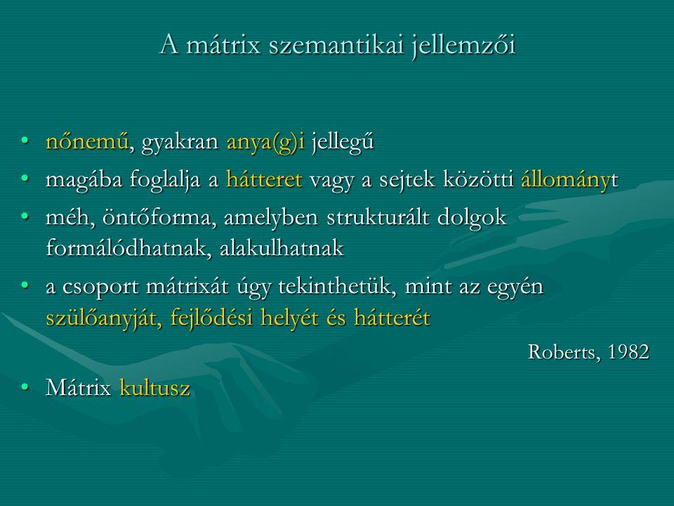 A mátrix szemantikai jellemzői nőnemű, gyakran anya(g)i jellegűnőnemű, gyakran anya(g)i jellegű magába foglalja a hátteret vagy a sejtek közötti állom