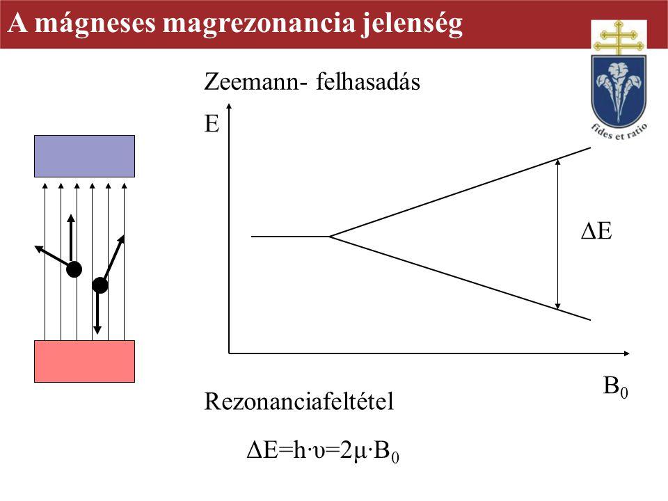 A mágneses magrezonancia jelenség E B0B0 EE ΔE=h·υ=2μ·B 0 Zeemann- felhasadás Rezonanciafeltétel