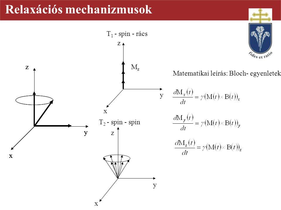 z x y z x y z x y z x y T 1 - spin - rács T 2 - spin - spin z x y MzMz Relaxációs mechanizmusok z x y Matematikai leírás: Bloch- egyenletek