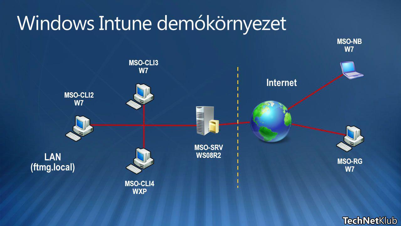LAN (ftmg.local) MSO-SRV WS08R2 MSO-CLI2 W7 Internet MSO-CLI3 W7 MSO-CLI4 WXP MSO-RG W7 MSO-NB W7