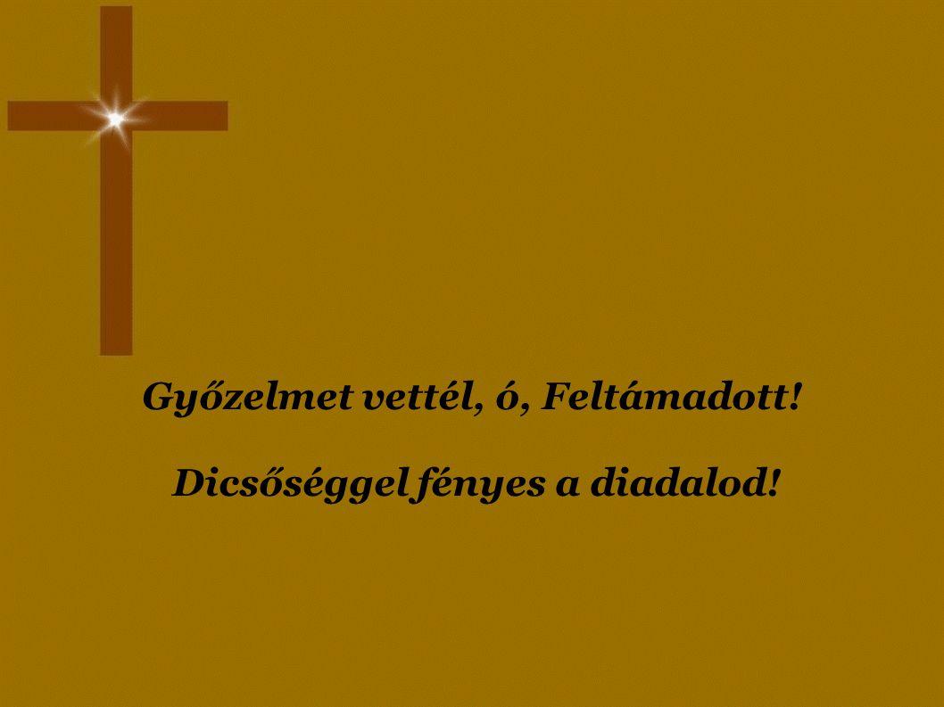 Istentől áldott húsvéti ünnepeket! Készítette: Mecseki Csilla Angéla 2011.