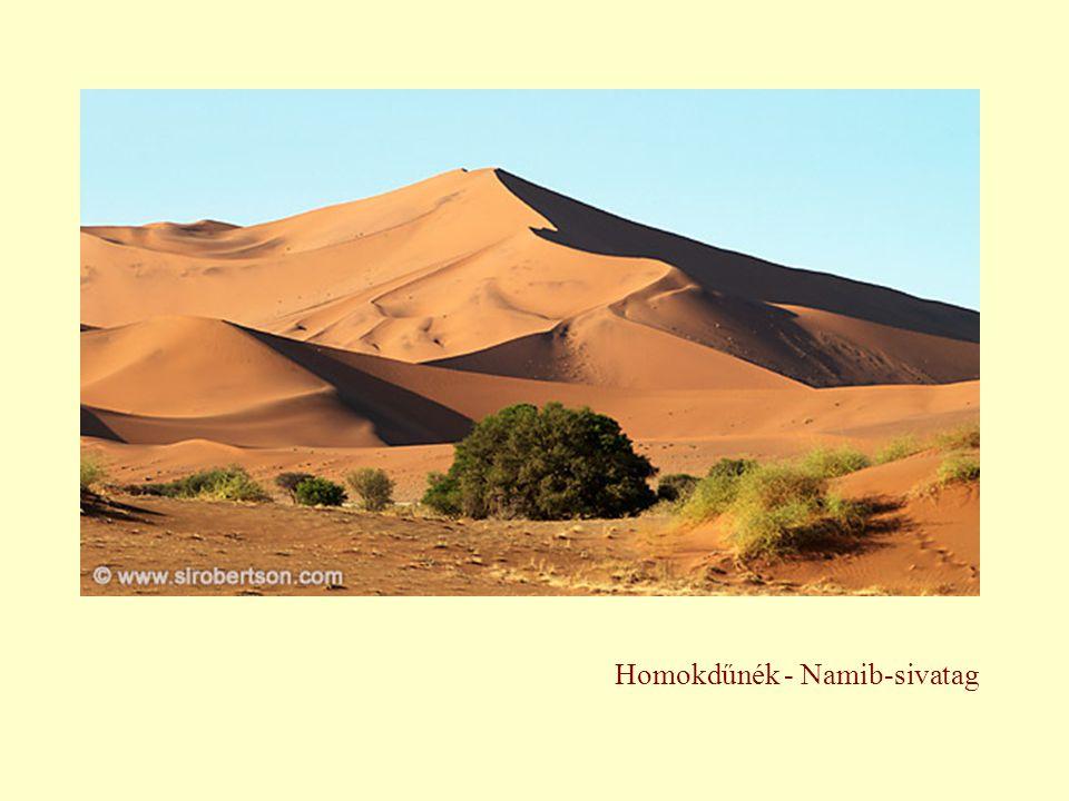 Homokdűnék - Namib-sivatag