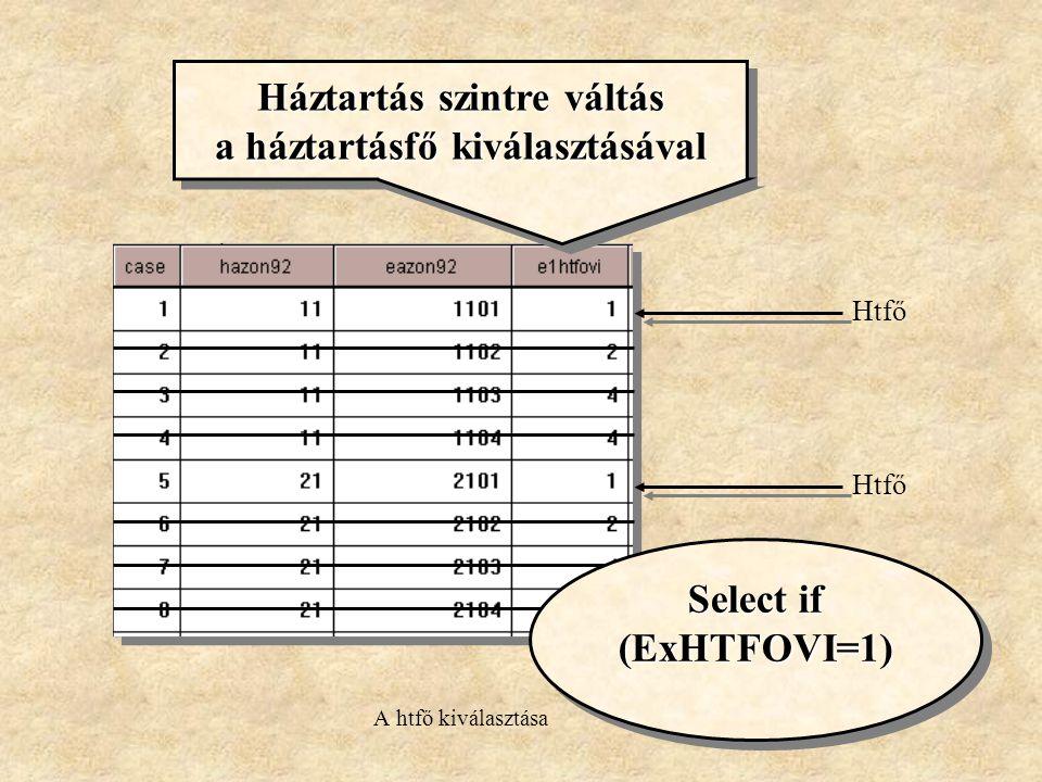 Háztartás szintre váltás a háztartásfő kiválasztásával Háztartás szintre váltás a háztartásfő kiválasztásával Htfő Select if (ExHTFOVI=1) Select if (ExHTFOVI=1) A htfő kiválasztása