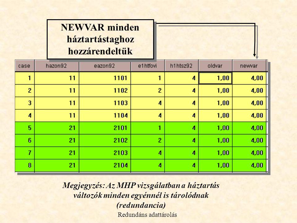 NEWVAR minden háztartástaghoz hozzárendeltük NEWVAR minden háztartástaghoz hozzárendeltük Megjegyzés: Az MHP vizsgálatban a háztartás változók minden egyénnél is tárolódnak (redundancia) Redundáns adattárolás