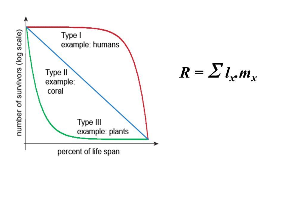 R =  l x.m x