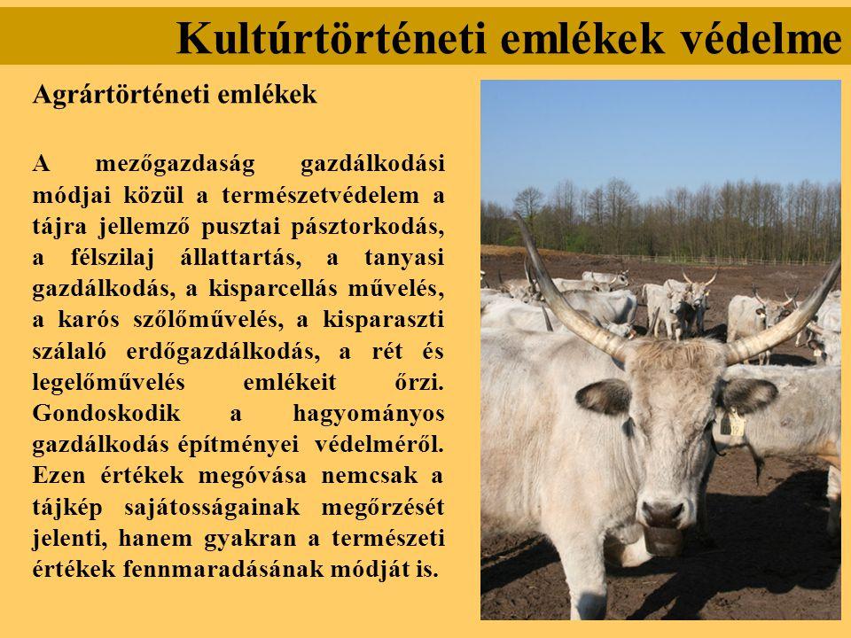 Kultúrtörténeti emlékek védelme Agrártörténeti emlékek A mezőgazdaság gazdálkodási módjai közül a természetvédelem a tájra jellemző pusztai pásztorkod