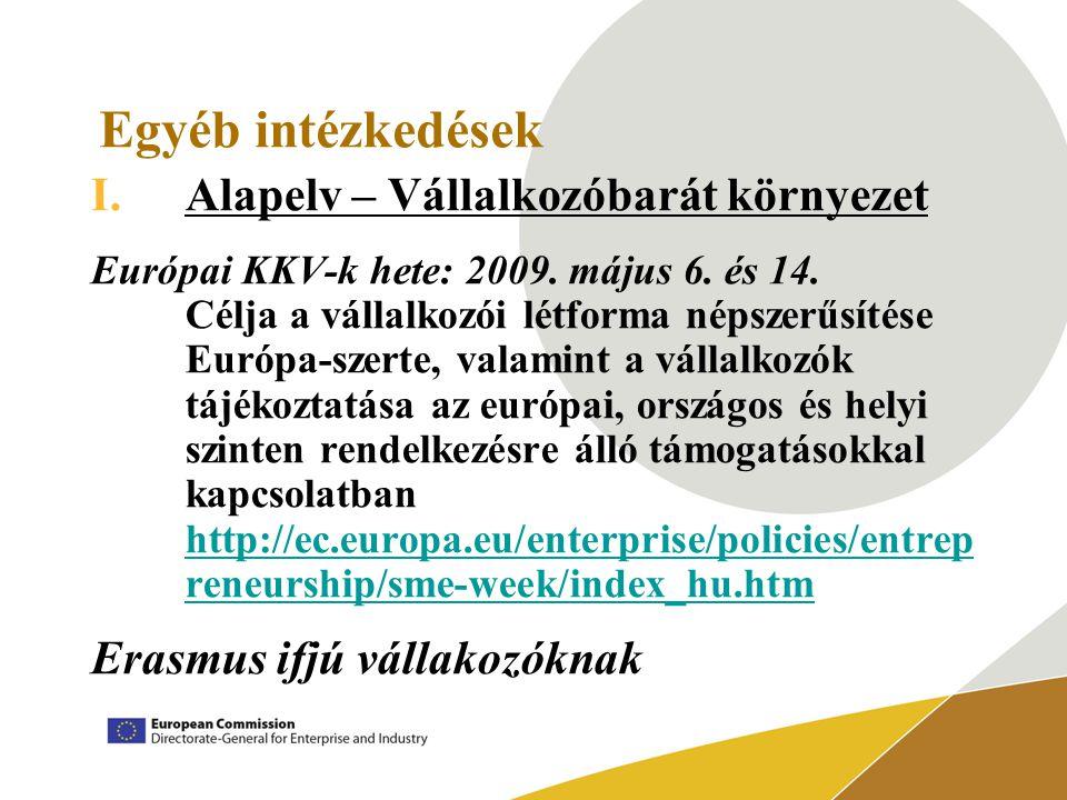 Egyéb intézkedések I.Alapelv – Vállalkozóbarát környezet Európai KKV-k hete: 2009.