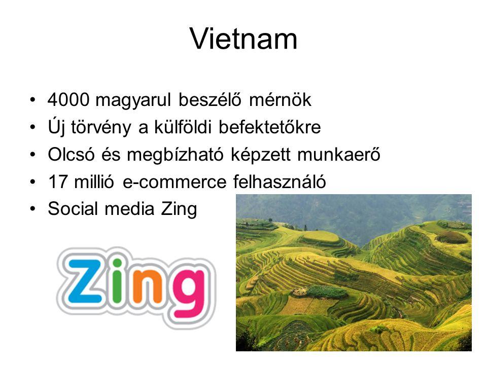 4000 magyarul beszélő mérnök Új törvény a külföldi befektetőkre Olcsó és megbízható képzett munkaerő 17 millió e-commerce felhasználó Social media Zing Vietnam