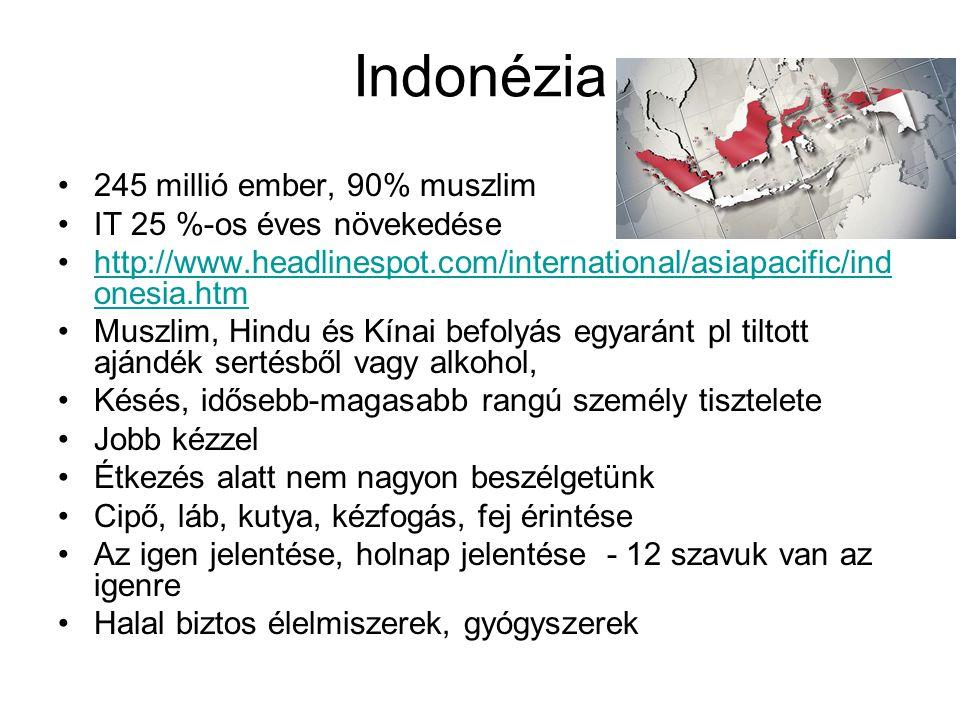245 millió ember, 90% muszlim IT 25 %-os éves növekedése http://www.headlinespot.com/international/asiapacific/ind onesia.htmhttp://www.headlinespot.c